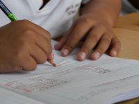Participación y educación de los pueblos indígenas para la creación científica