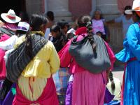 Habrá recorte de hasta 70% para programas dirigidos a indígenas, advierten diputados