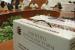 Avanza inclusión de mujeres en municipios de sistemas normativos: IEEPCO