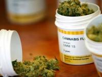 Ocho de cada diez a favor de la regulación de la marihuana con fines medicinales