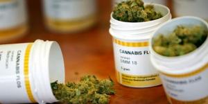 marihuana_uso_medicinal_alcaldes_de_mexico_septiembre_2016