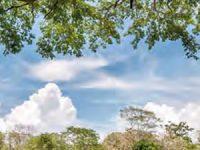 Presentan agenda para municipios biodiversos
