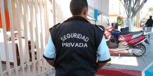 seguridad_privada_los_retos_en_mexico_alcaldes_de_mexico_enero_2017