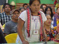 Pueblos indígenas eligen a su candidata presidencial para 2018