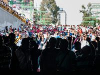 Desaparición forzada en México: la visión académica