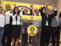 PRD aprueba construir frente amplio opositor rumbo a 2018