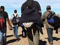 Migración latente, peligro constante