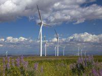 Implementan tecnología de punta en campo eólico de Tamaulipas