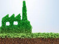 Desarrollo y medio ambiente: una relación conflictiva