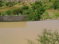 ¿Cómo enfrentar la escasez de agua?
