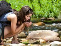 El agua ¿una mercancía o un patrimonio?