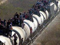 La migración como componente del campo social en el TLCAN