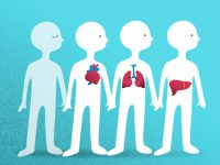 El desafío de la donación de órganos en México