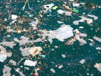Día mundial de los Océanos: ¿cómo mantenerlos limpios?