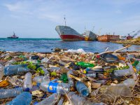 CNDH urge a implementar los ODS de la Agenda 2030