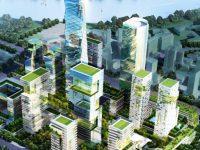 Grandes ciudades requieren planificación y estrategias ecológicas a corto plazo