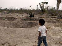 En riesgo 33 municipios de Veracruz por sequía severa