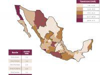 Cerrará 2018 con la mayor tasa de homicidio del México moderno: Observatorio Nacional Ciudadano