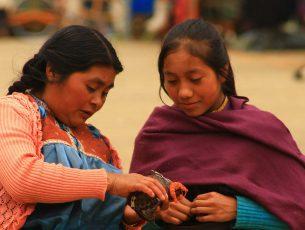 El 30.5% de población indígena no cuenta con acceso a la alimentación: CNDH