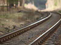 Cuatro empresas interesadas en participar en construcción del Tren Maya