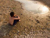 El cambio climático y sus impactos en la salud humana