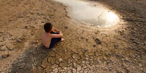 efectos en la salud humana por el cambio climatico