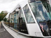 Este será el primer país con transporte público gratuito