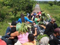 Procesos de la migración para su abordaje global y regional
