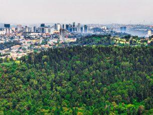 Mancha urbana de la Ciudad de México avanza sobre suelo de conservación